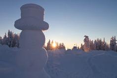 Frosty 1